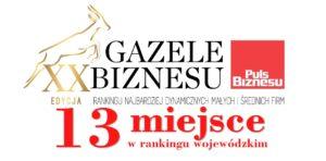 Gazele Biznesu 2019 - 13 miejsce