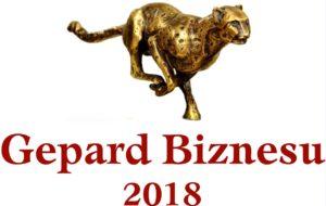 Gepard Biznesu 2018